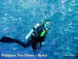 Bohol's Funtabulous Dive Sites