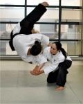 Aikido technique.